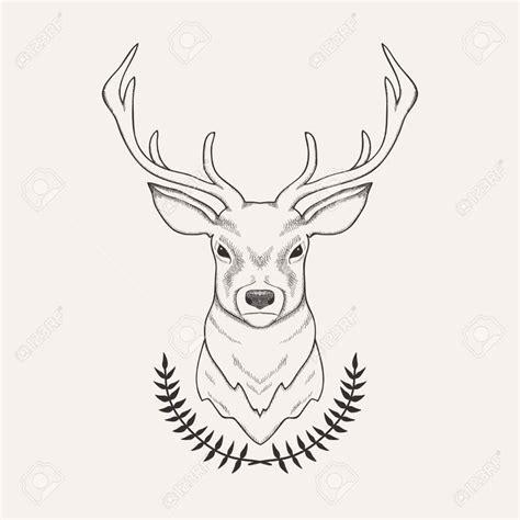 draw free no 25 beautiful deer illustration ideas on deer