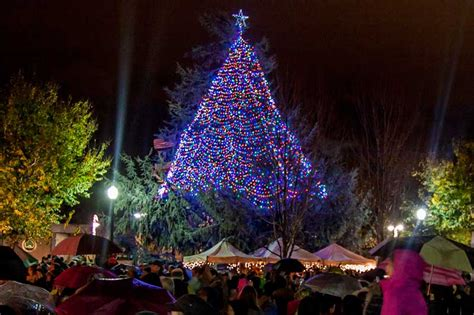 christmas tree lights up downtown chico the orion