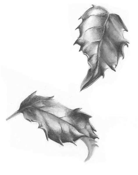 holly tattoo designs leaf studies in greyscale lorraine