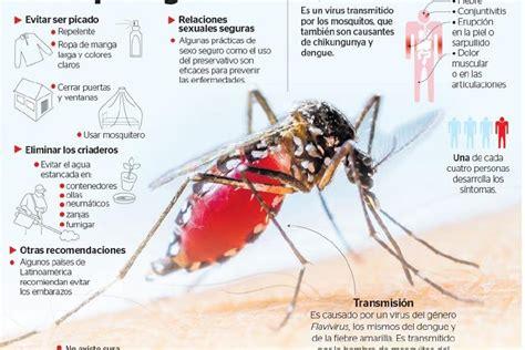 imagenes de niños con zika salud confirma 17 ni 241 os con microcefalia por zika