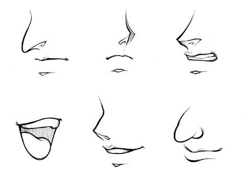 How To Draw A Nose From The Front