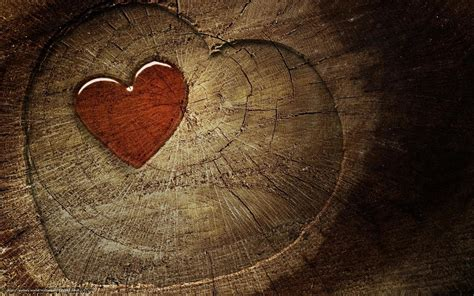 wallpaper section download wallpaper heart hearts tree section free