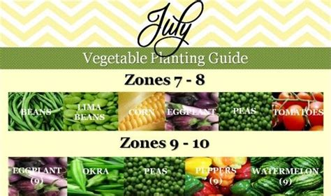 vegetables zone 9 july vegetable planting guide southern planting calendar