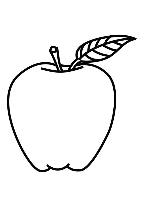 coloring book apple pencil apple outline drawing drawing gallery