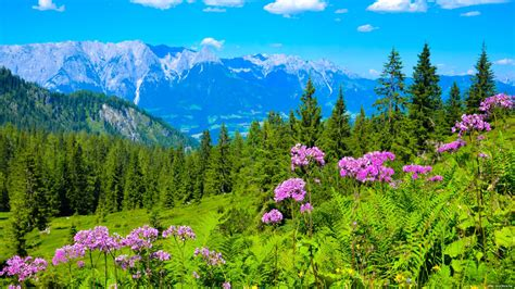 beautiful pictures beautiful austria youtube