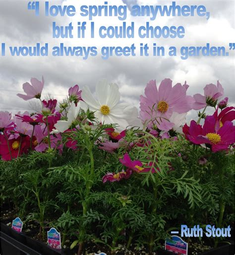 Herb Garden Quotes Quotesgram Quotes On Gardens And Flowers