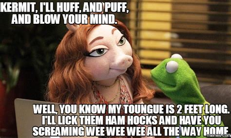 Kermit And Miss Piggy Meme - breaking news kermit and miss piggy drove to splitsville