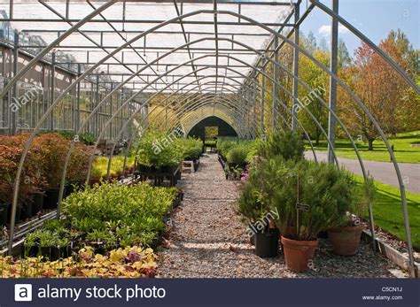 Manhattan Botanical Garden Nolen Greenhouse At The New York Botanical Garden Stock Photo Royalty Free Image 37773950 Alamy
