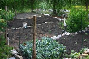 what to do with a sloped backyard triyae backyard hill drainage various design
