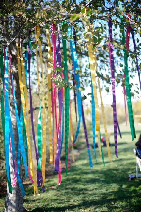 ribbon for tree 77 best images about cat friendly garden on