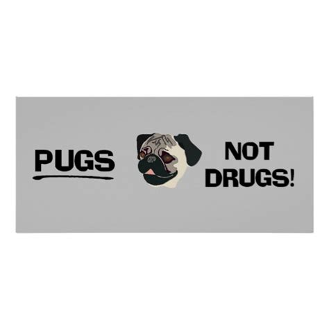 pugs not drugs poster pugs not drugs poster zazzle