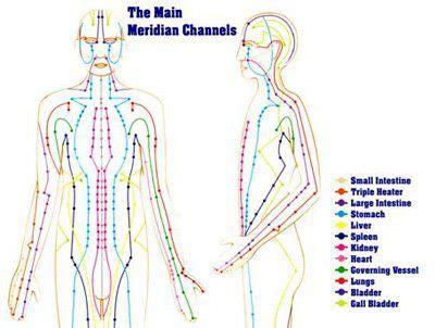 medicine meridians diagram meridians traditional medicine tcm asserts that