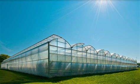 green house loan hindustan agritech greenhouse projects of india greenhouse