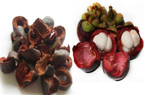 cara membuat obat bius dari obat antimo cara membuat obat dari kulit buah manggis ciricara