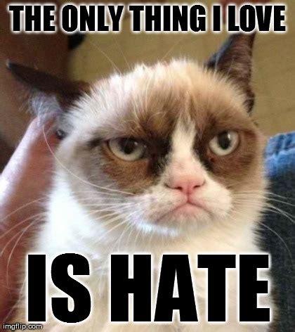 Grumpy Cat Love Meme - grumpy cat reverse meme imgflip