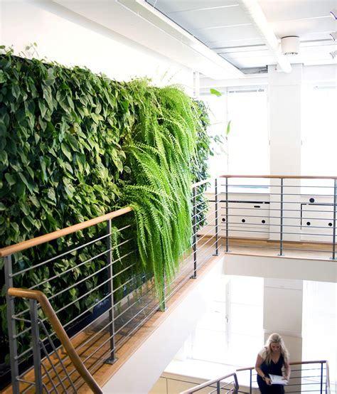 indoor garden wall innovative greenery interior design concept archinspire