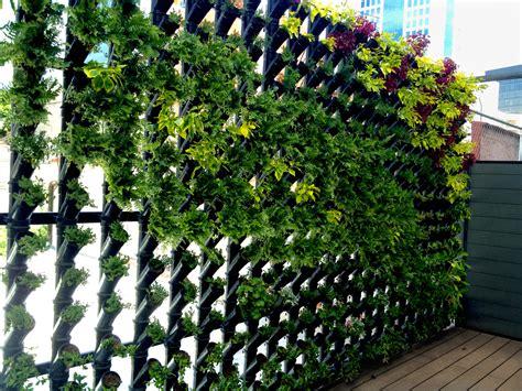 imagenes muros verdes planta ox 237 geno m 233 xico df muro verde modular planta ox 237 geno