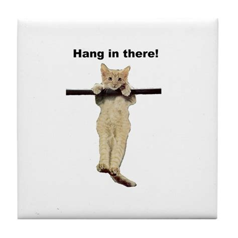 Design Kitchen Curtains by Hang In There Baby Cute Kitty Cat Kitten On Branch By
