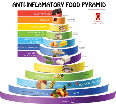 Anti Inflammatory Detox Diet by Loveinfographics 187 Submit Infographics
