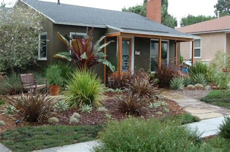 drought tolerant backyard designs pin by rosemary alewine on in the yard pinterest