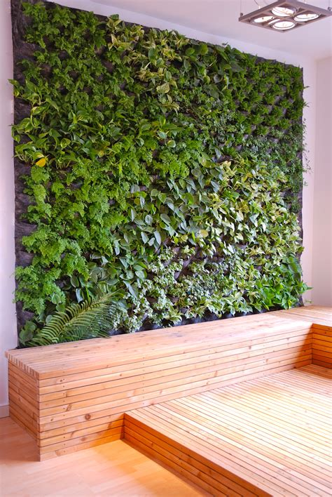 interior plant wall living wall not sure how i feel about this but it s