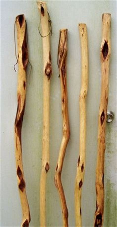 shalaylee for sale check out these great willow hiking sticks for