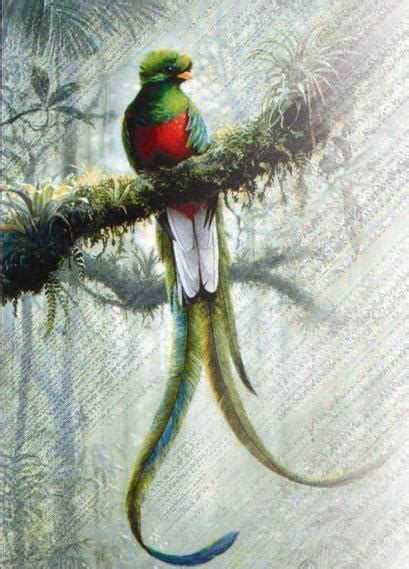 imagenes de quetzal a lapiz la magia de chich 233 n itza movimiento ondulatorio