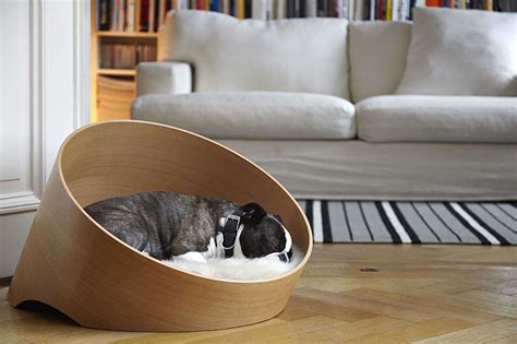 the covo dog bed keeps pets comfortable and suits any