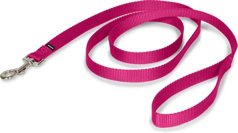 collars and leashes petsafe premier leash raspberry medium 6 ft chewy