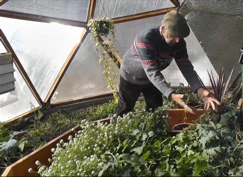 heat l for greenhouse greenhouse kits seattle palram 813ft l x 606ft w x 685ft