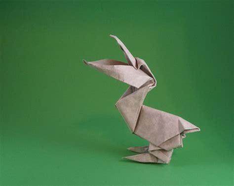 Origami Pelican - origami pelicans 1 gilad s origami page