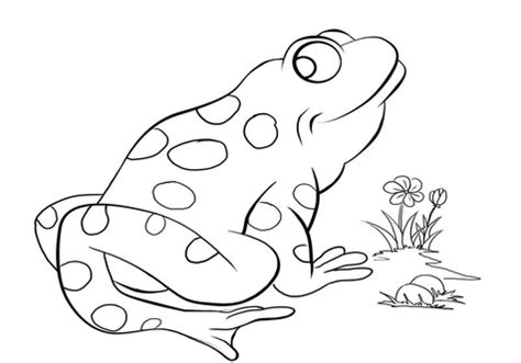 kissing frog coloring page prince coloring barbie princess and pages grig3 org