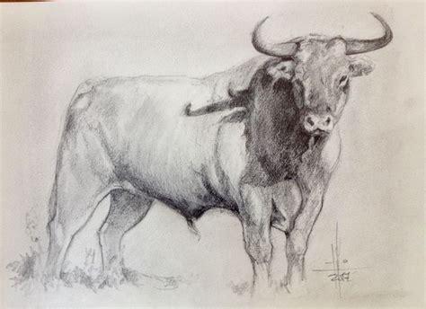 imagenes de toros para dibujar a lapiz dibujo a l 225 piz de un toro por francisco javier abell 225 n