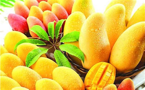 mango rocks mango wallpaper wallpapersafari