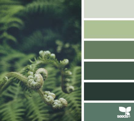 canva color palette ideas 25 best ideas about forest green bedrooms on pinterest