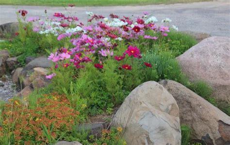 Rock Garden Landscape In Front Of Restaurant Picture Of Rock Garden Tavern