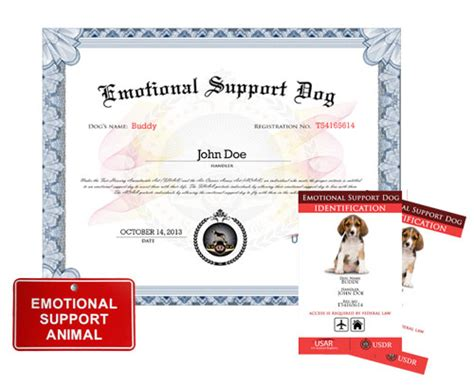 emotional support certificate emotional support basic kit 187 us registry