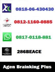 distributor resmi brainking plus indonesia 081211600885