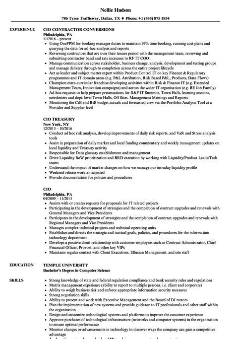 cio resume template stunning great cio resumes photos exle resume ideas