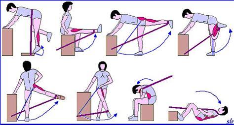 esercizi interno coscia con elastico attivit 192 fisica per combattere la cellulite sport e medicina