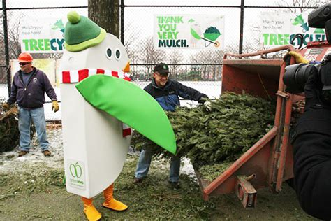 recycle your christmas tree at mulchfest 2014 inhabitat