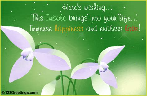 immense happiness  imbolc ecards greeting cards