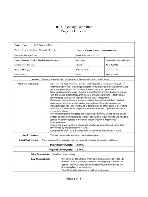 project overview template project overview template 2 free templates in pdf word