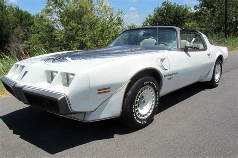 turbo bird 1980 pontiac trans am survivor