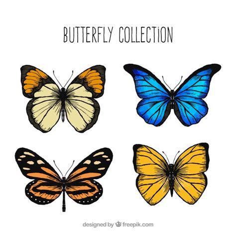Decorative Butterflies by Assortment Of Decorative Butterflies Vector Free