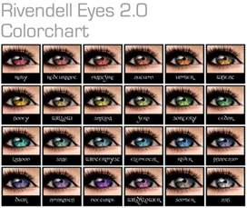 what does my eye color 25 best ideas about eye color charts on