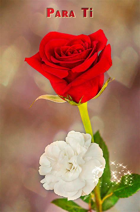imágenes rosas para ti esta rosa es para ti pictures to pin on pinterest pinsdaddy