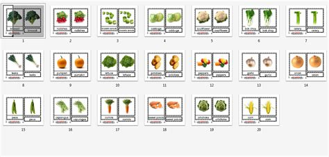 printable montessori pdf montessori materials vegetable cards age 1 to 6