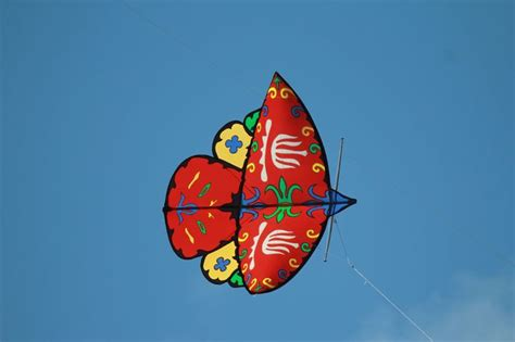 kite design indonesia 66 best fly a kite images on pinterest