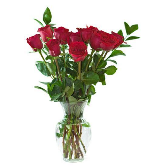fiore per chiedere scusa fiori per chiedere scusa efiorista in italia ti
